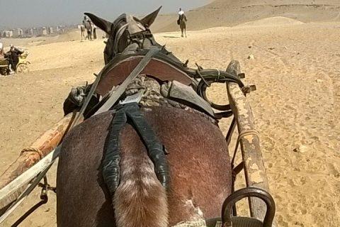 Pferdekutsche%20zu%20den%20Pyramiden 480x320