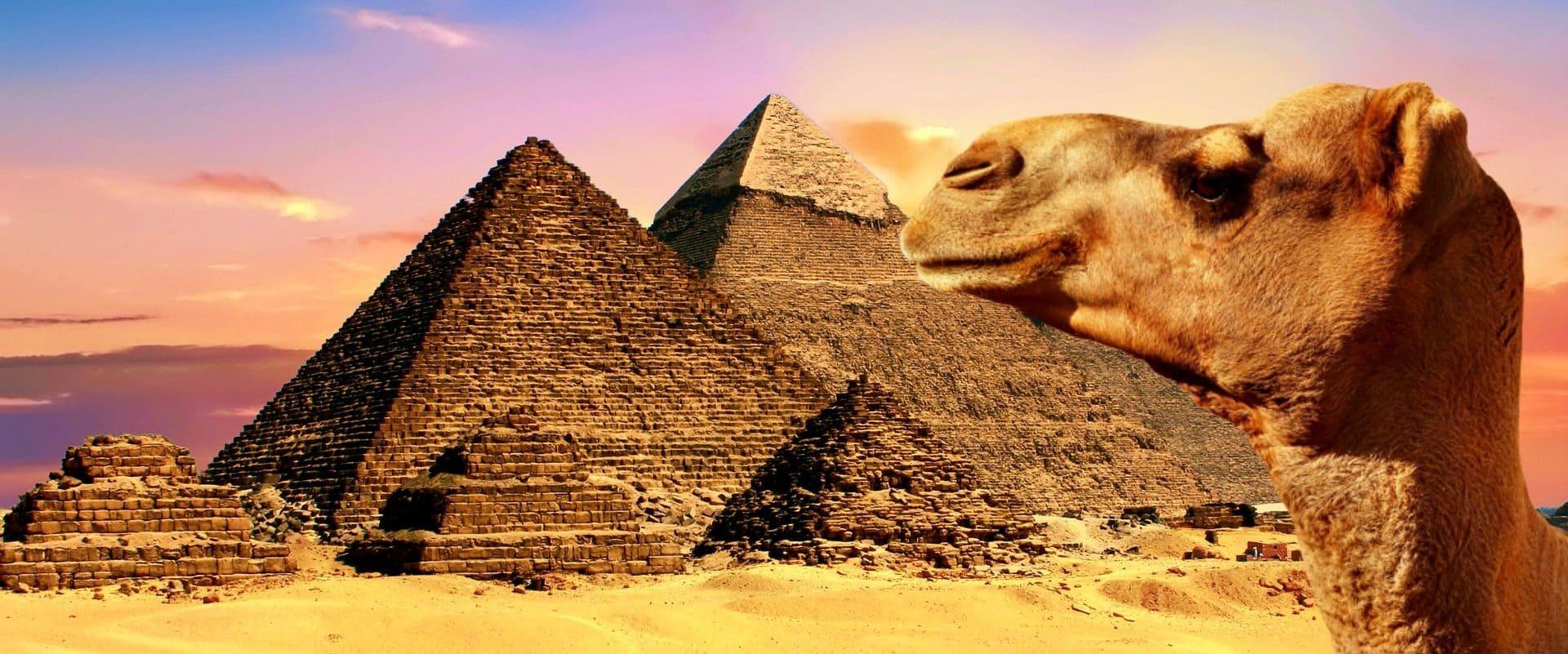 Ägypten verstehen und erleben