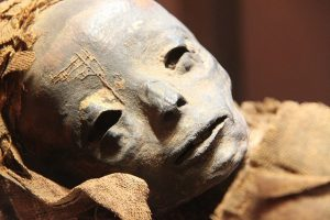 Mumie - Ägyptische Museum
